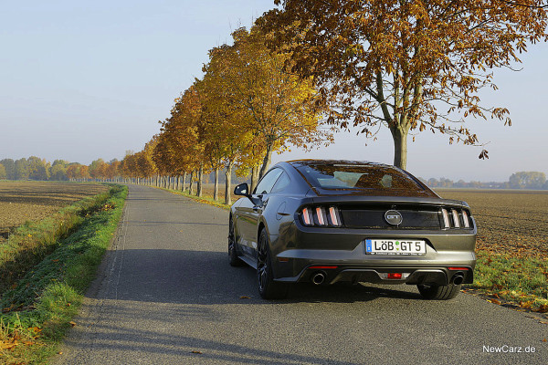1-NewCarz-Ford-Mustang-GT (9)