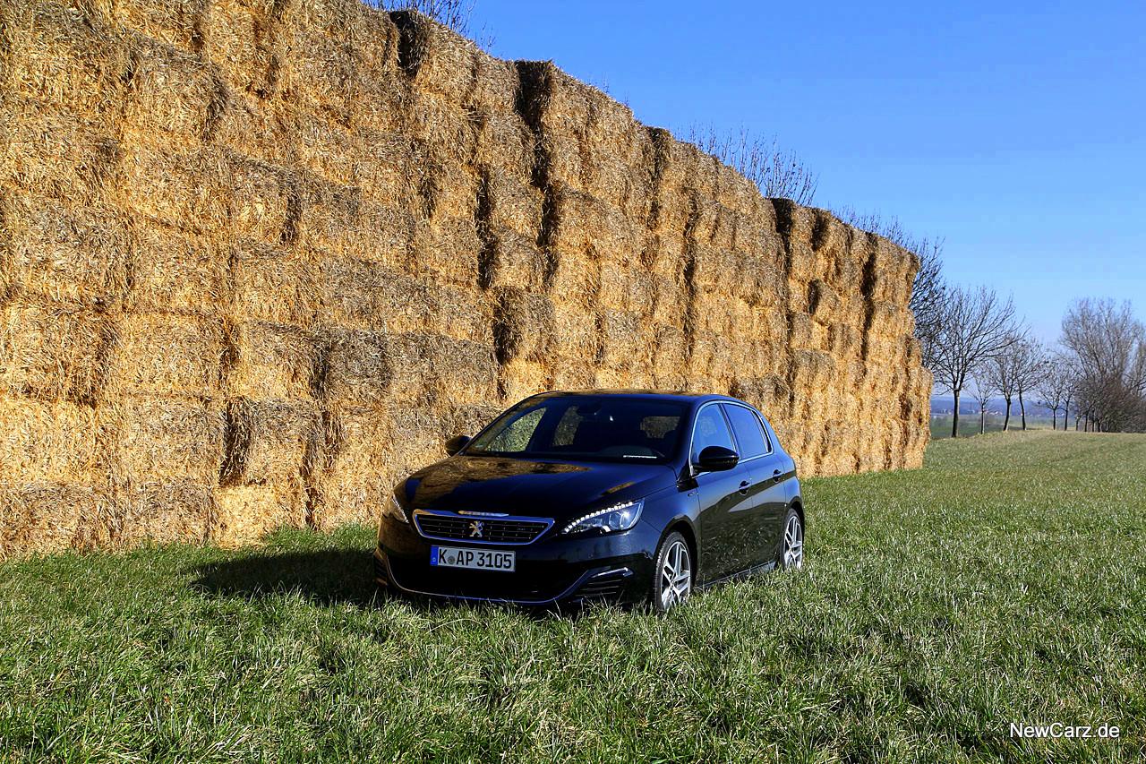 NewCarz-Peugeot-308-GT (44)