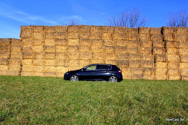 NewCarz-Peugeot-308-GT (46)