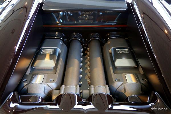 NewCarz-Bugatti-Veyron-Grand-Sport-Vitesse (3)