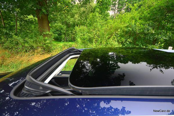 NewCarz-VW-Passat-Variant-Dauertest (5)