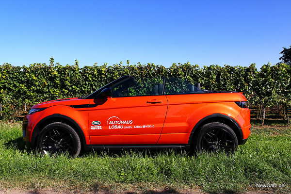 NewCarz-Range-Rover-Evoque-Cab (60)