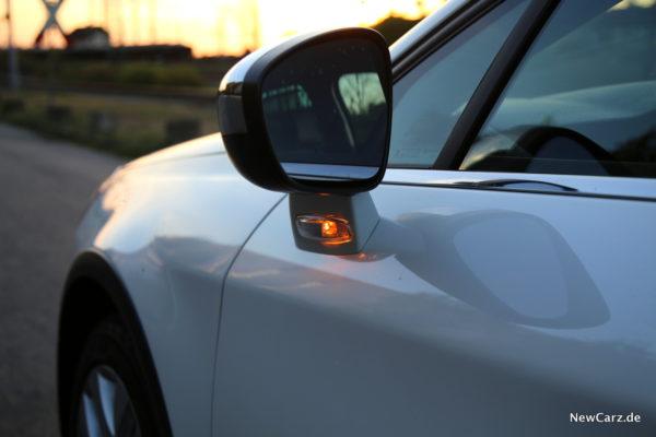 Citroen C5 Tourer Außenspiegel