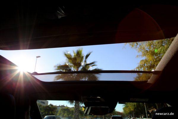 Volvo XC40 Dach