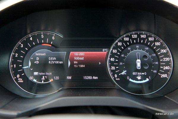 Ford Edge Verbrauch