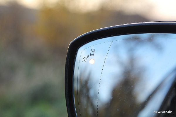 Ford Edge Außenspiegel