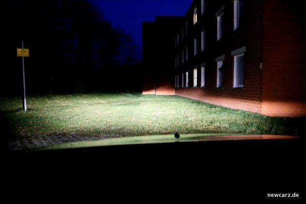 Dacia Logan MCV Licht