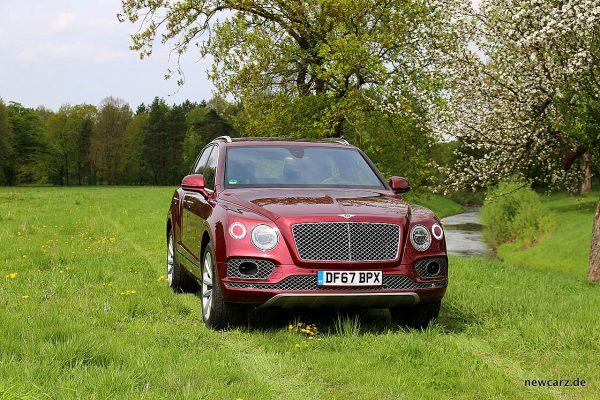 Bentley Bentayga Diesel Wiese