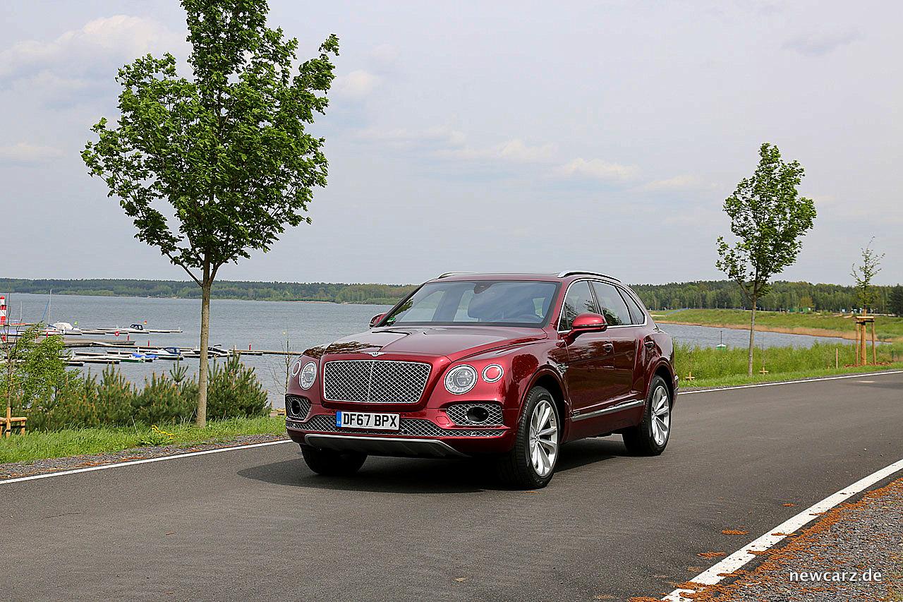 Bentley Bentayga Diesel - Das Selbstzünder-Statement - NewCarz.de