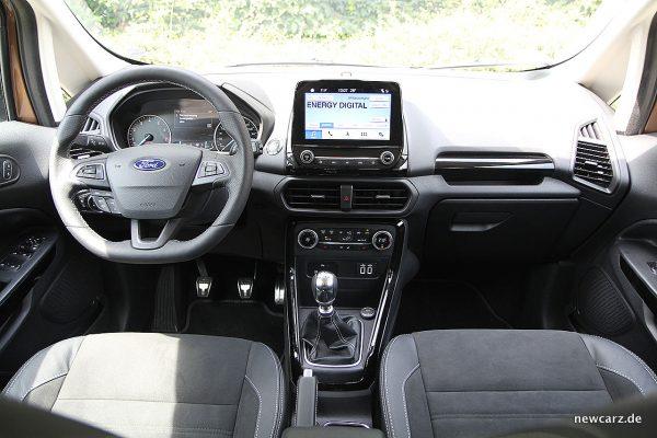 Ford EcoSport Armaturenbereich