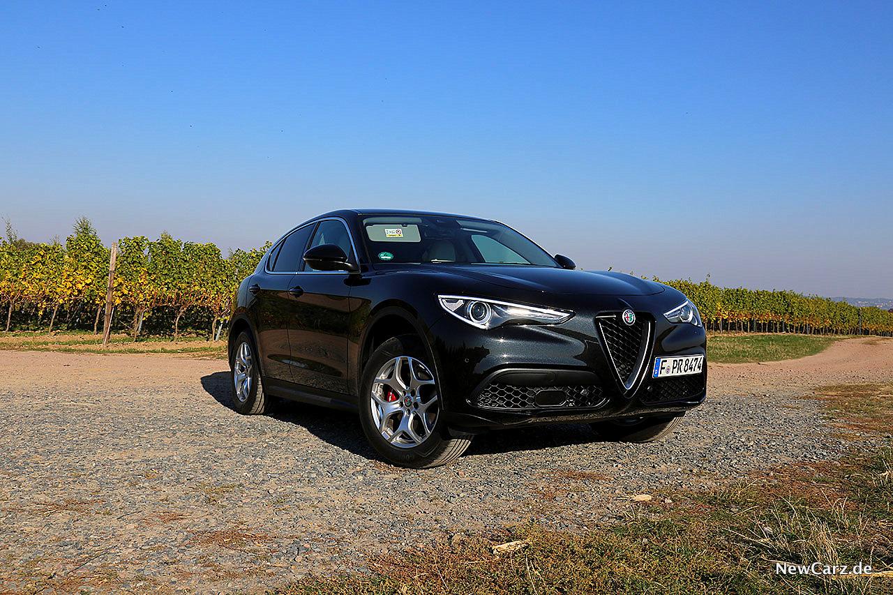 Alfa Romeo Stelvio - Italiens next Topmodel - NewCarz.de on