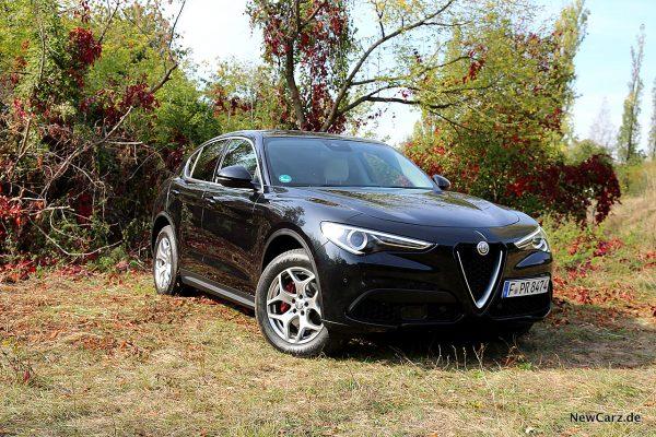 Alfa Romeo Stelvio schräg vorne