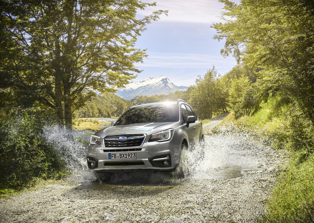 Frontansicht des Subaru Forester