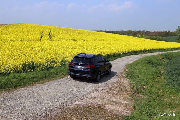 BMW X5 M50d vor Rapsfeld