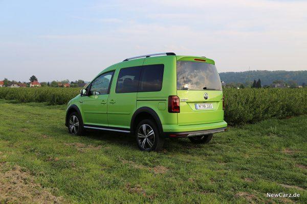 VW Caddy Alltrack schräg hinten links