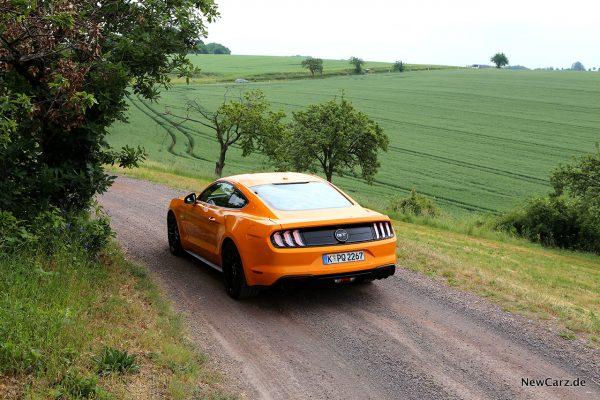 Ford Mustang GT schräg oben hinten