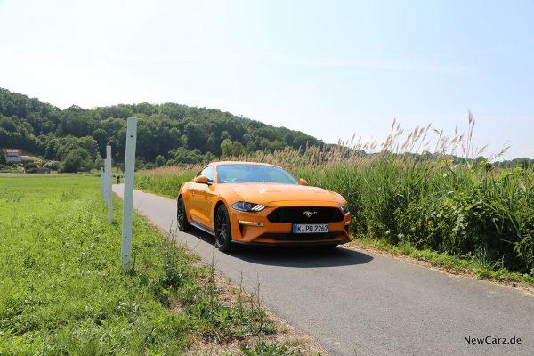 Ford Mustang GT auf Asphalt