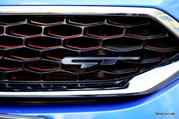 Frontgrill GT