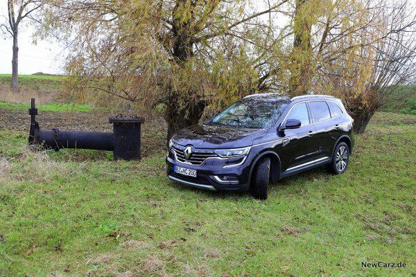 Unter der Weide im Renault Koleos Dauertest