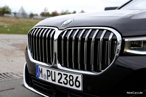 BMW Niere
