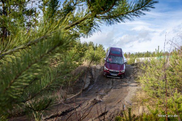 Subaru Forester e-Boxer Gefällefahrt