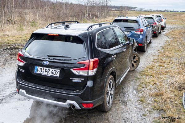 Forester in Reihe