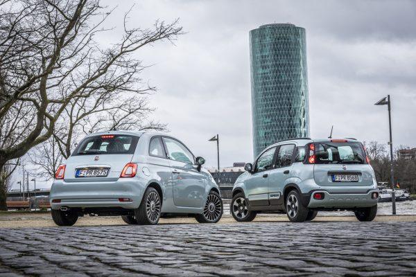 Fiat 500 und Fiat Panda Hybrid von hinten
