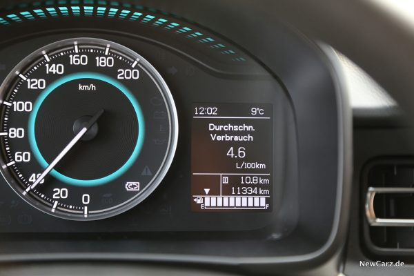 Verbrauch Ignis-Hybrid
