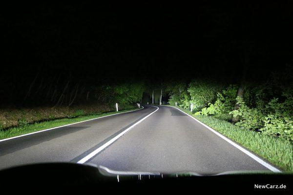 Fernlicht Taycan