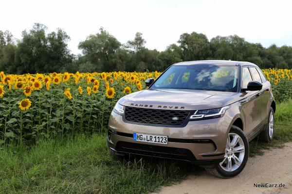 Range Rover Velar D300 vor Sonnenblumenfeld