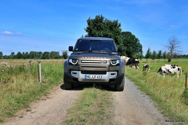 Land Rover Defender 110 an Kuhweide